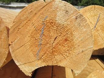 средство для обработки древесины