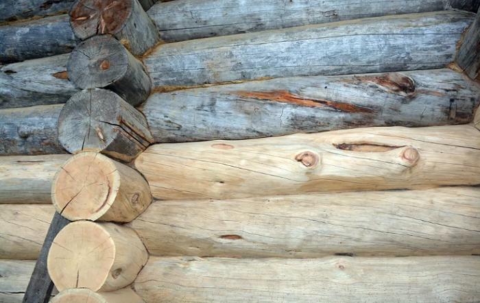 Гниль и гниение древесины. Средства против гниения и гнили древесины. Дом
