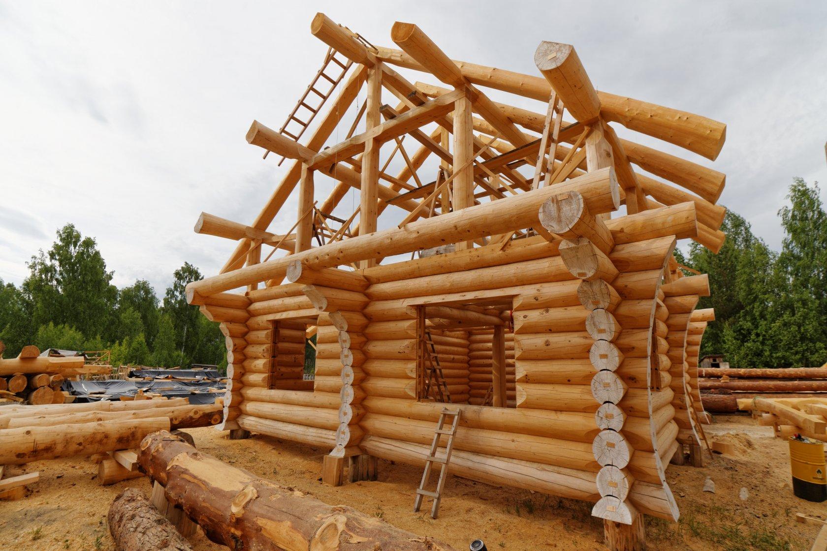 Как предохранить древесину от биозаражения?