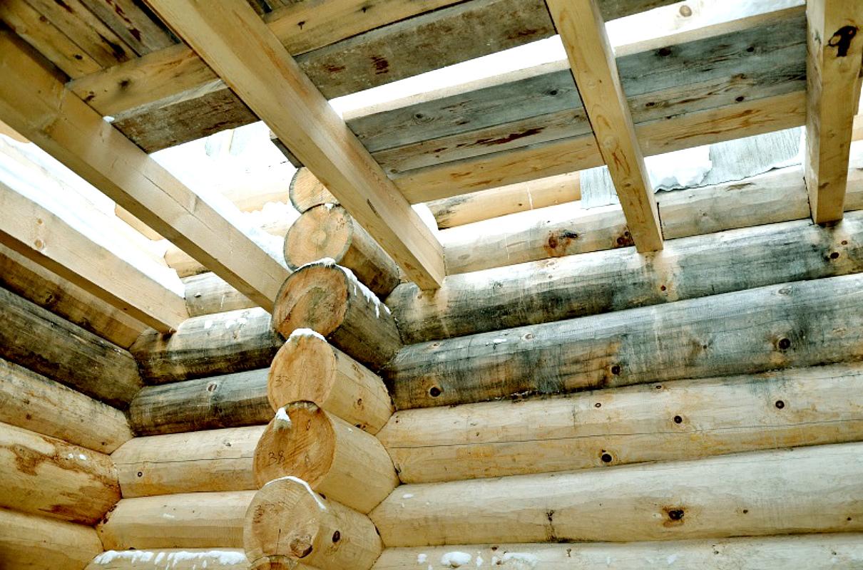 Белсин – качественый отбеливатель древесины – отличное средство против грибков (грибов) на древесине